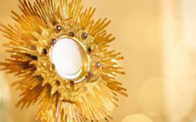20. November, In contact – eucharistische Anbetung